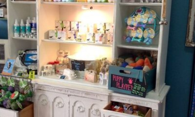 How To Store And Organize Pet Supplies